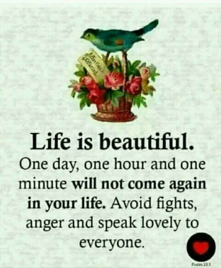🙇ସୁବିଚାର - Life is beautiful . One day , one hour and one minute will not come again in your life . Avoid fights , anger and speak lovely to everyone . - ShareChat