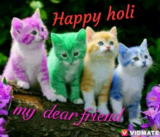ହୋଲି ସେଲ୍ଫି - Happy holi my dear friends V VIDMATE - ShareChat