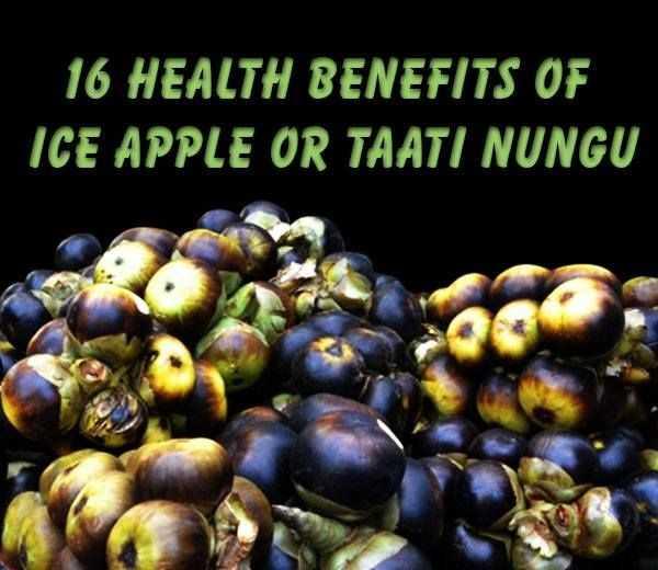 இன்று நுங்கு தினம் - ' 16 HEALTH BENEFITS OF ICE APPLE OR TAATI NUNGU - ShareChat