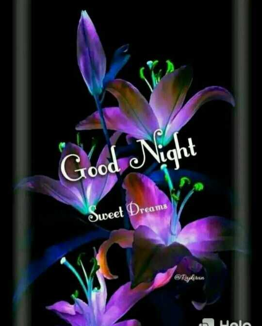 🌙இரவு வணக்கம் - Good Night Sweet Dreams @ Raykiran Suola - ShareChat