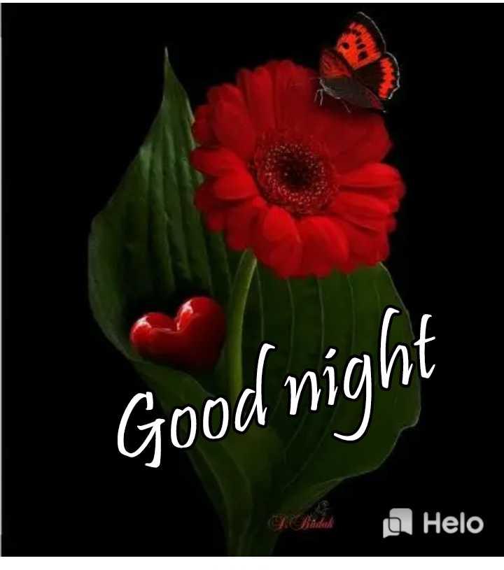 🌙இரவு வணக்கம் - Good night Bitlik a - ShareChat