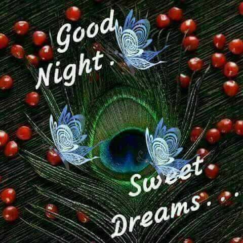 🌙இரவு வணக்கம் - . Good Night Sweet . Dreams . . - ShareChat