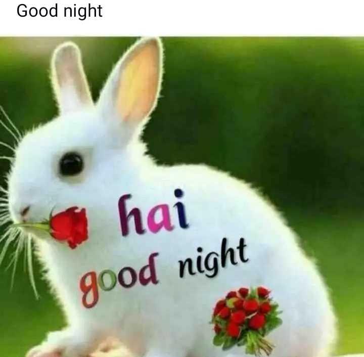 🌙இரவு வணக்கம் - Good night hai good night - ShareChat