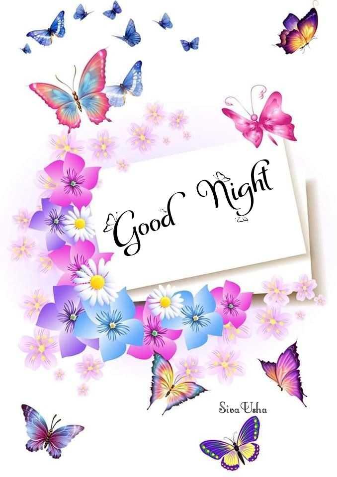 🌙இரவு வணக்கம் - Good Night A Siva Usha - ShareChat