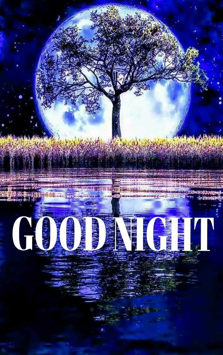 🌙இரவு வணக்கம் - sel C SORBER sirs EAE KO GOOD NIGHT DREWS - ShareChat