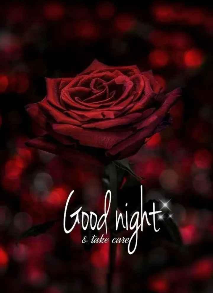 🌙இரவு வணக்கம் - Good night & take care - ShareChat