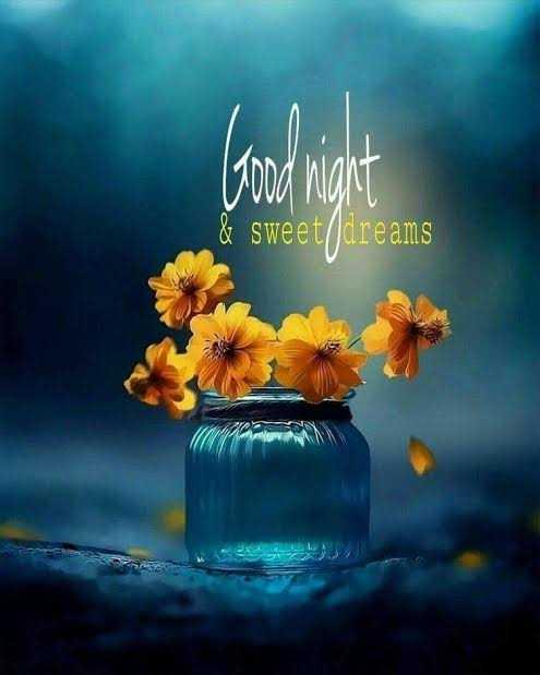 🌙இரவு வணக்கம் - Good maht & sweet / / dreams - ShareChat