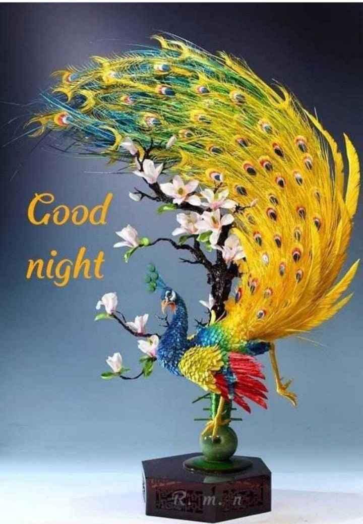 🌙இரவு வணக்கம் - Coo night - ShareChat