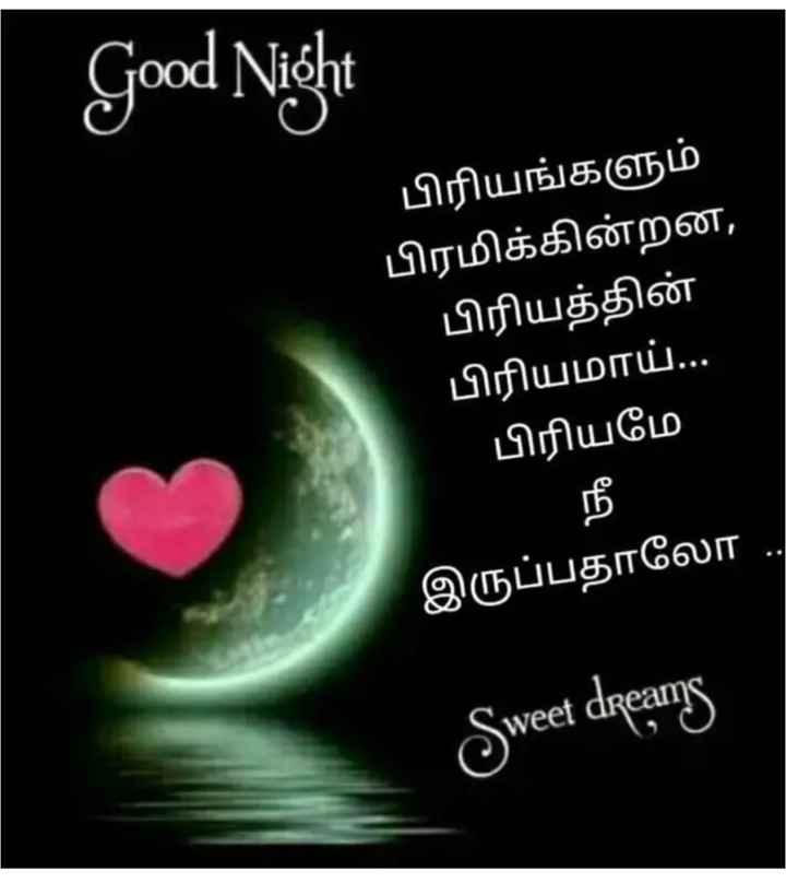 🌙இரவு வணக்கம் - Good Night பிரியங்களும் பிரமிக்கின்றன , பிரியத்தின் ' பிரியமாய் . . . பிரியமே இருப்பதாலோ . . Sweet dreams - ShareChat