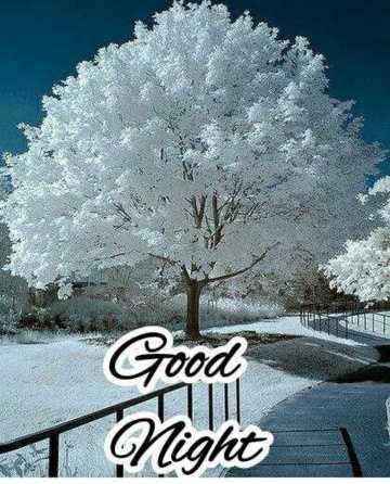 🌙இரவு வணக்கம் - Good 1 Night - ShareChat