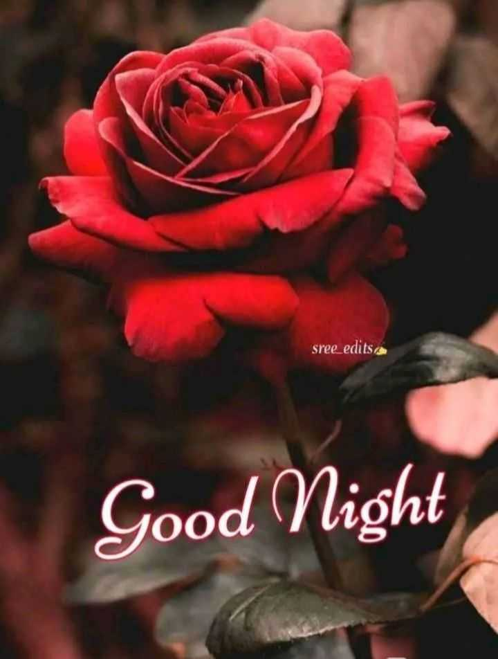 🌙இரவு வணக்கம் - sree _ edits . com Good Night - ShareChat