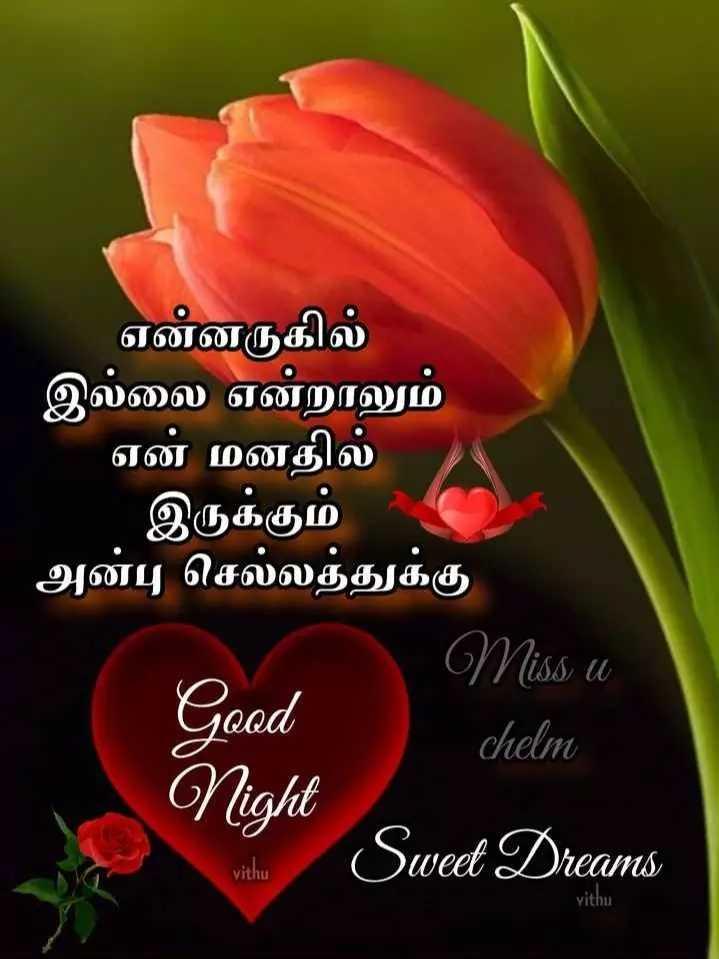 🌙இரவு வணக்கம் - என்னருகில் இல்லை என்றாலும் என் மனதில் இருக்கும் அன்பு செல்லத்துக்கு Miss u chelm Night Sweet Dreams Good vithu vithu - ShareChat