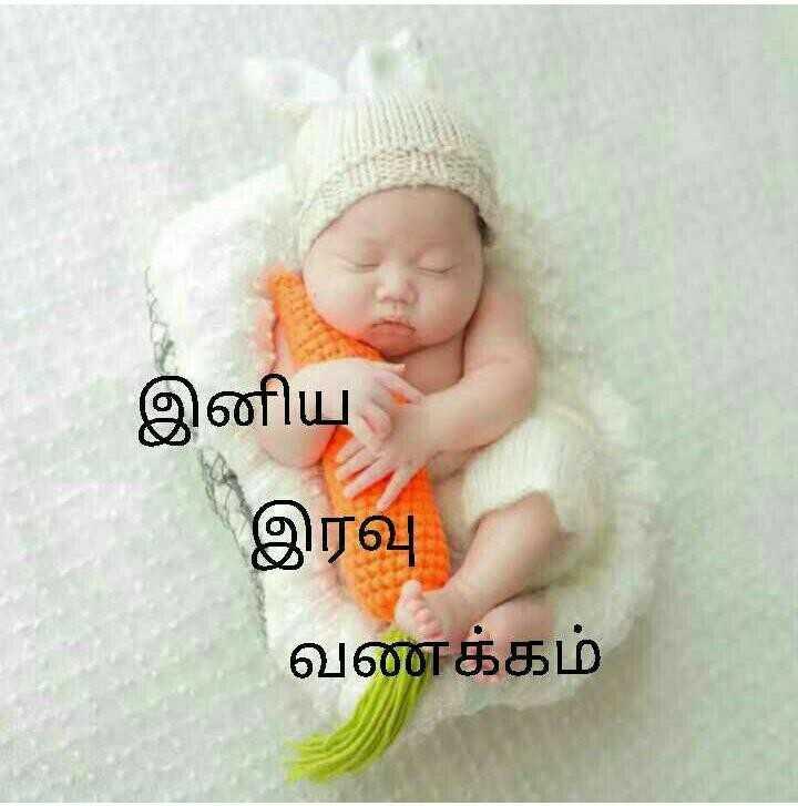 🌙இரவு வணக்கம் - இனிய இரவு வணக்கம் - ShareChat