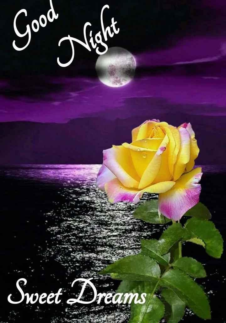 🌙இரவு வணக்கம் - Good Night Sweet Dreams - ShareChat