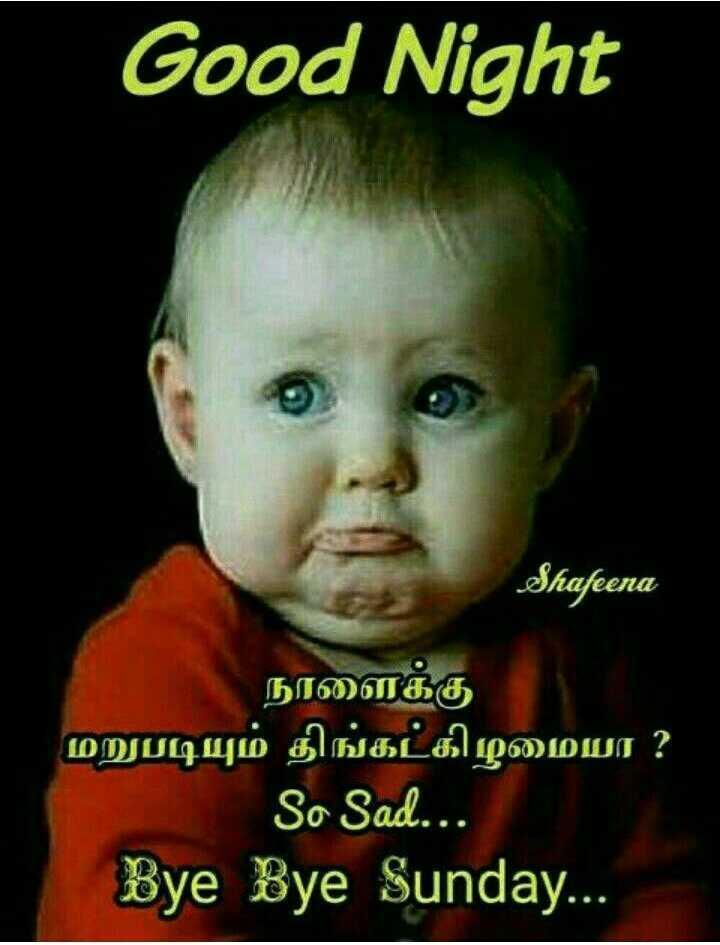 🌙இரவு வணக்கம் - Good Night Shafeena நாளைக்கு மறுபடியும் திங்கட்கிழமையா ? So Sad . . . Bye Bye Sunday . . . - ShareChat