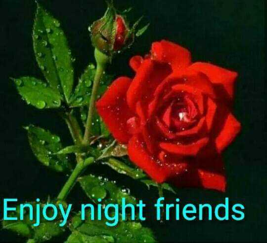 🌙இரவு வணக்கம் - Enjoy night friends - ShareChat