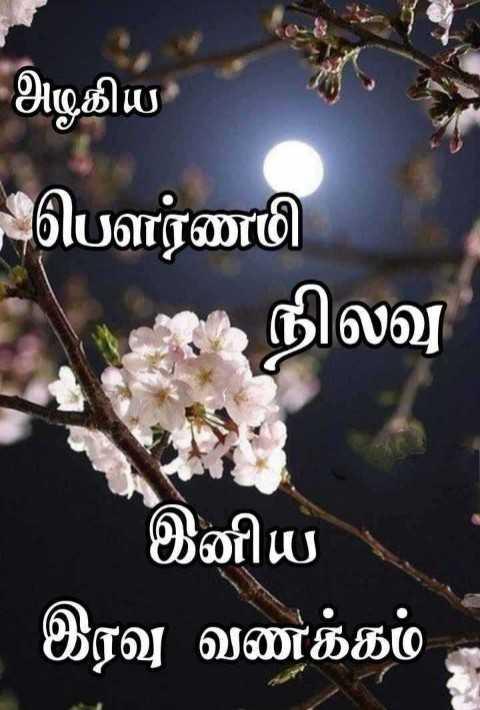 🌙இரவு வணக்கம் - அழகிய பௌர்ணமி நிலவு இனிய இரவு வணக்கம் - - ShareChat
