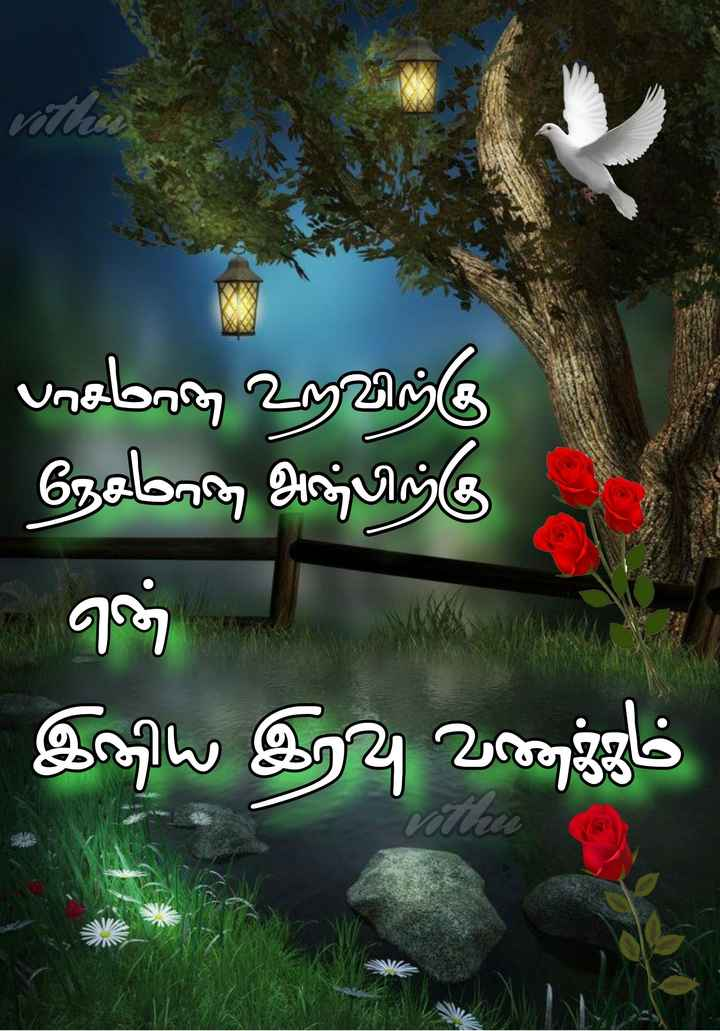 🌙இரவு வணக்கம் - ' பாசமாக ) உளவிற்கு ' நேசரே , அபிற்கு - ஏ இய இரவு வணgஜம் - ShareChat