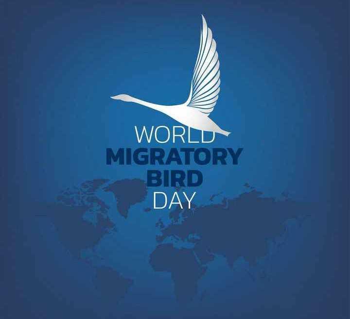 🐦உலக வலசை போதல் தினம் - WORLD MIGRATORY BIRD DAY - ShareChat