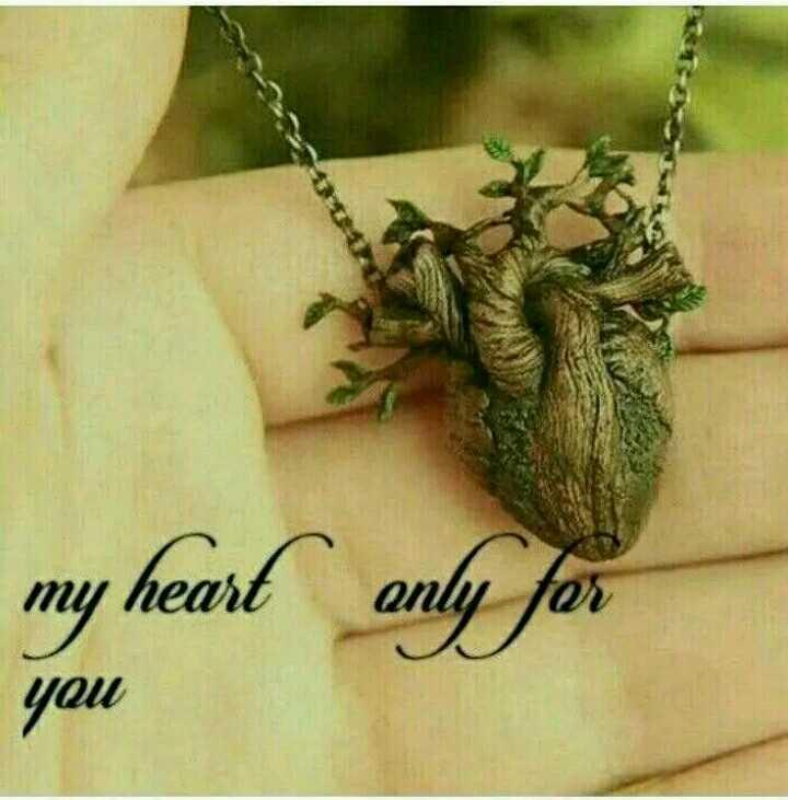💑 காதல் ஜோடி - only for my heart you - ShareChat