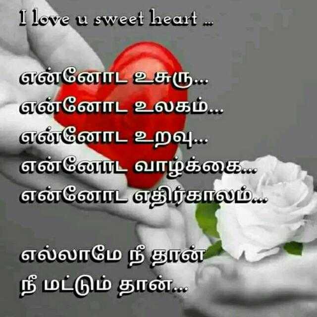 💑 காதல் ஜோடி - I love u sweet heart . . . என்னோட உசுரு . . . என்னோட உலகம் . . . என்னோட உறவு . . . என்னோட வாழ்க்கை . . . என்னோட எதிர்காலம் . . . எல்லாமே நீ தான் நீ மட்டும் தான் . . . - ShareChat