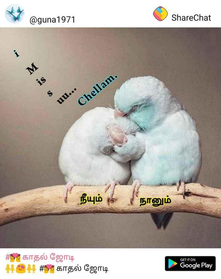 💑 காதல் ஜோடி - @ guna1971 ShareChat uu . . . Chellam . | நீயும் 4 நானும் GET IT ON # காதல் ஜோடி MOM # காதல் ஜோடி Google Play - ShareChat