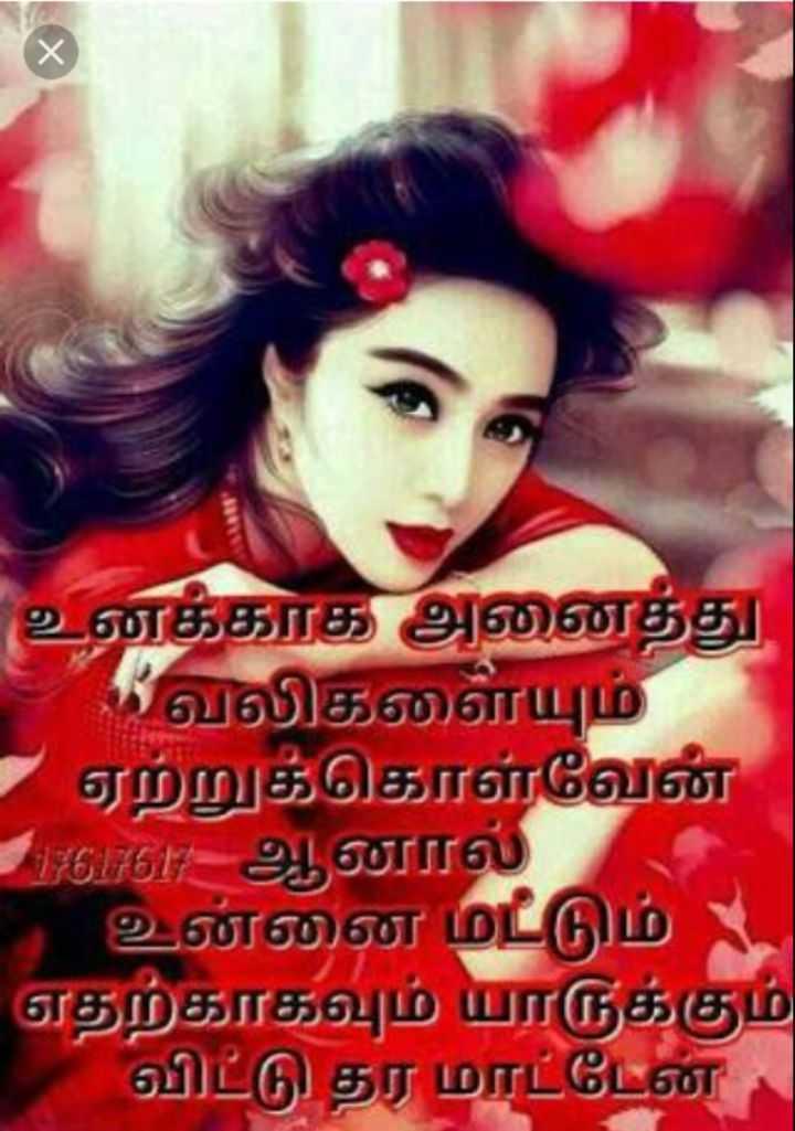 Chat com