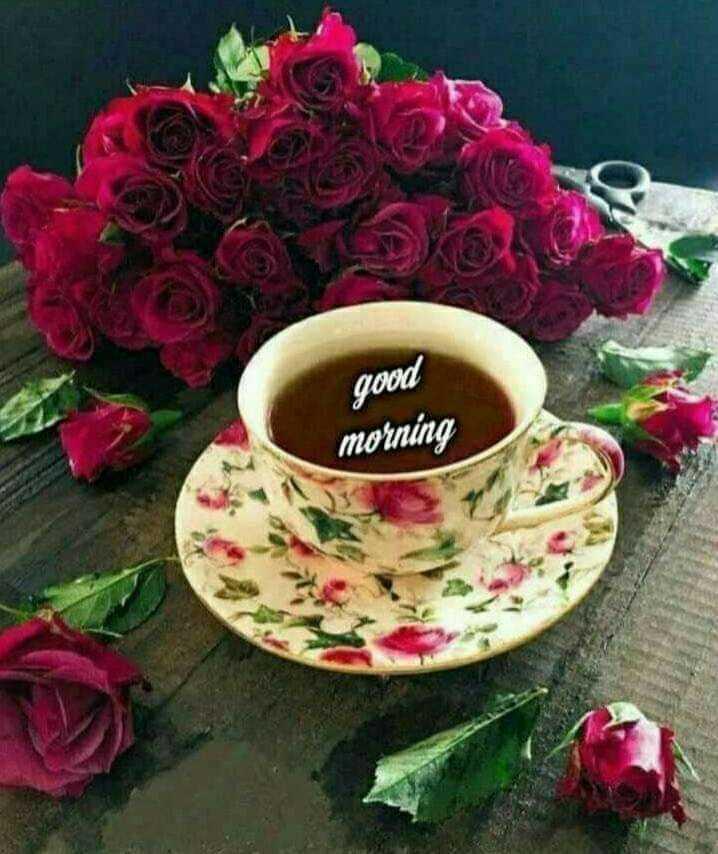 💕 காதல் ஸ்டேட்டஸ் - good morning - ShareChat