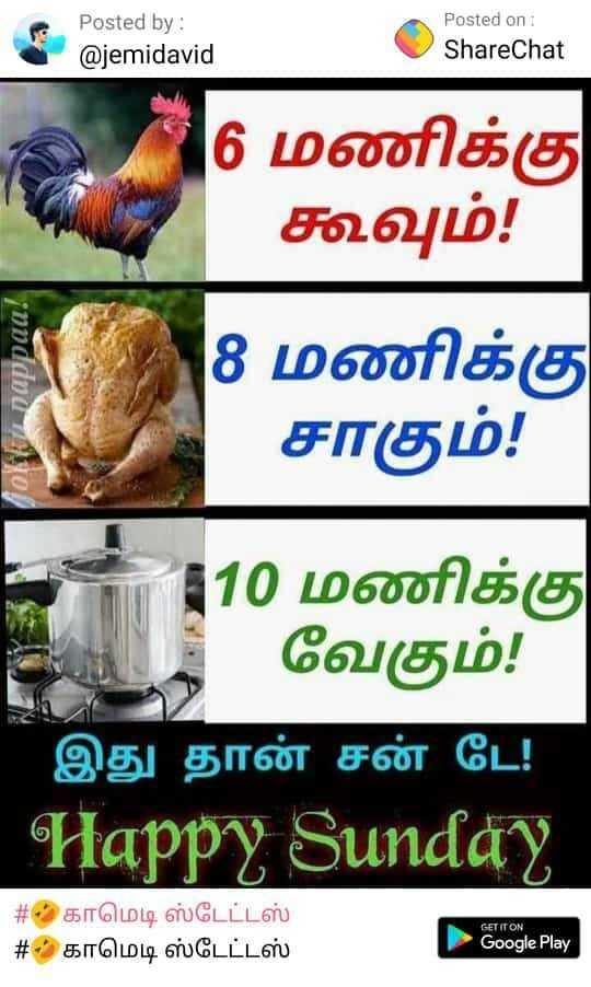 🤣காமெடி ஸ்டேட்டஸ் - Posted by : @ jemidavid Posted on : ShareChat 16 மணிக்கு கூவும் ! andithப் பிழி 8 மணிக்கு சாகும் ! 110 மணிக்கு வேகும் ! ' இது தான் சன் டே ! Happy Sunday # காமெடி ஸ்டேட்டஸ் # - 2 காமெடி ஸ்டேட்டஸ் GET IT ON Google Play - ShareChat