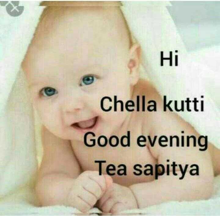 காமெடி - а Ні Chella kutti Good evening Tea sapitya - ShareChat
