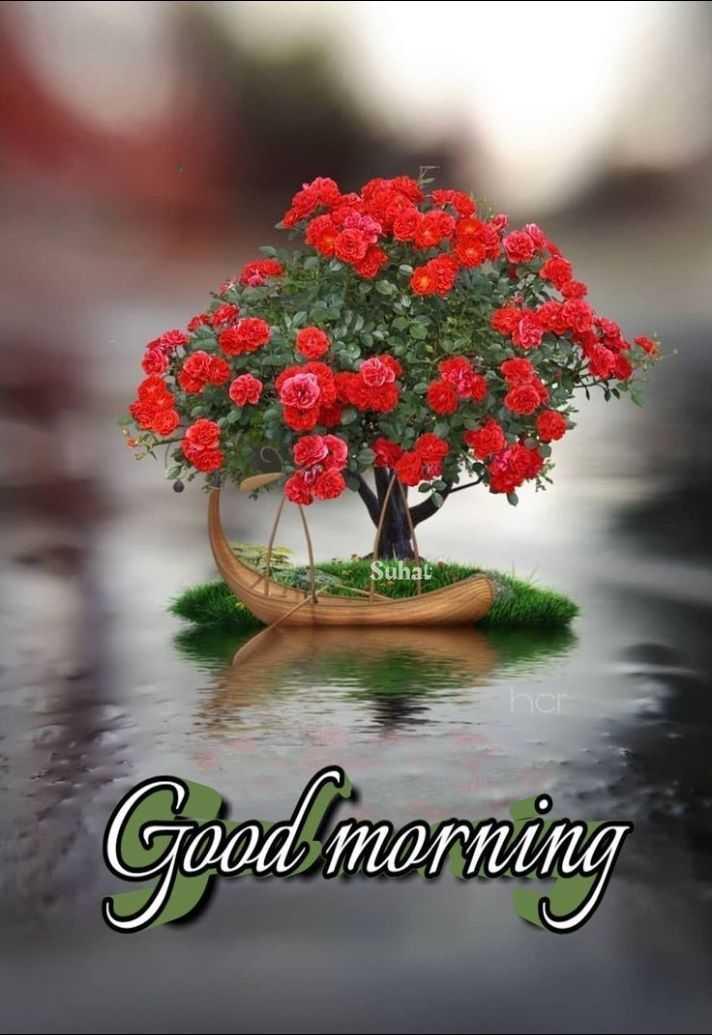 🌞காலை வணக்கம் - Suhat Goodmorning - ShareChat