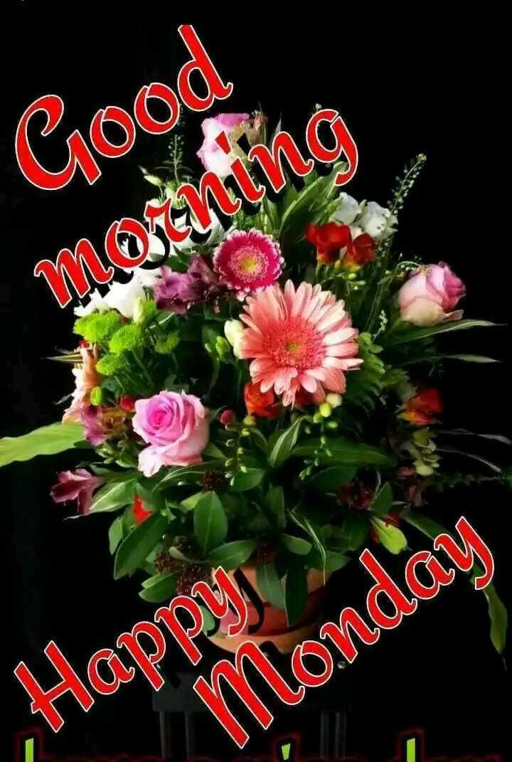 🌞காலை வணக்கம் - Good morening Happy Monday - ShareChat