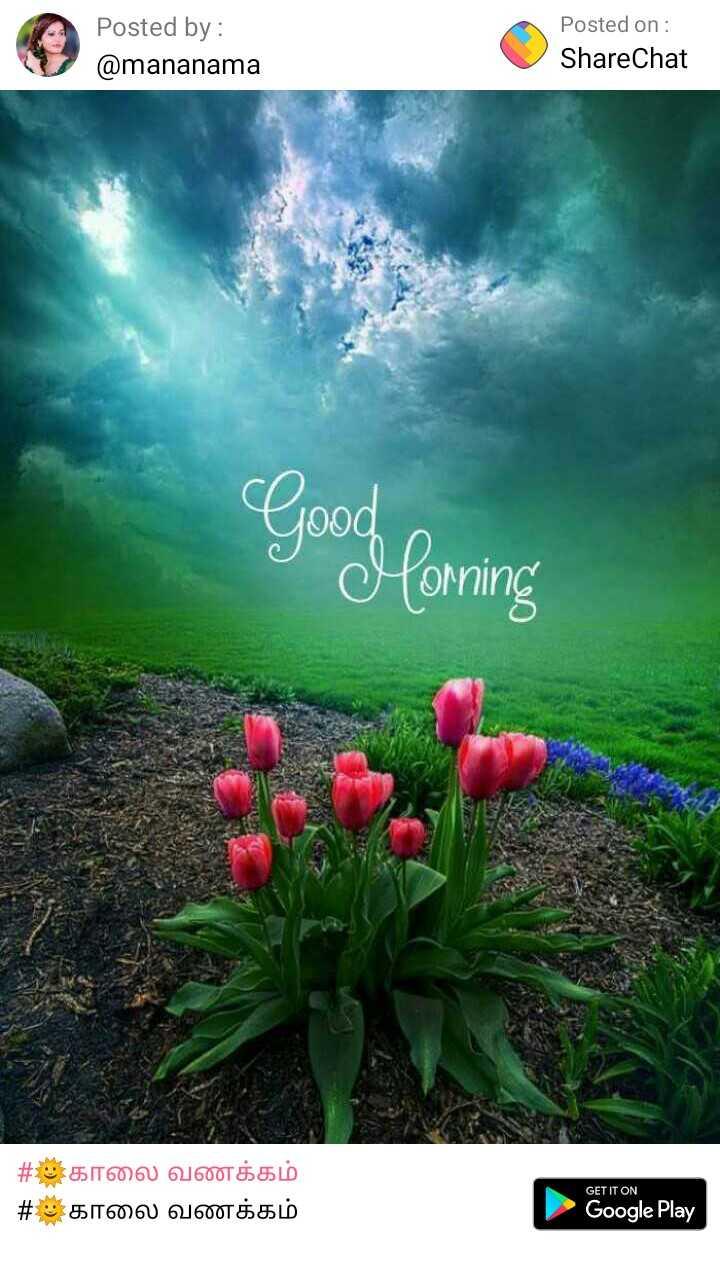 🌞காலை வணக்கம் - Posted by : @ mananama Posted on : ShareChat Good forming | # காலை வணக்கம் # காலை வணக்கம் GET IT ON Google Play - ShareChat