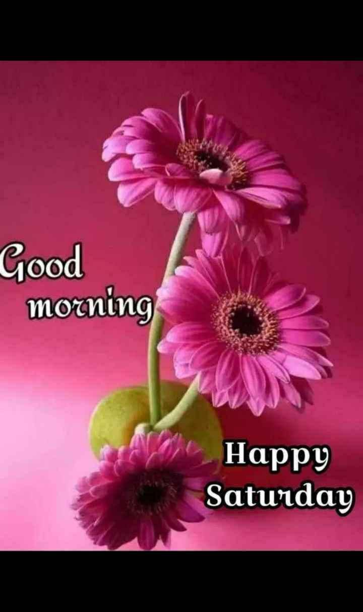 🌞காலை வணக்கம் - Good morning Happy Saturday - ShareChat
