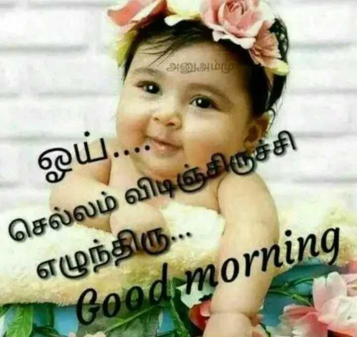 🌞காலை வணக்கம் - ஓய் . . . செல்லம் விடிஞ்சிருச்சி எழுந்திரு . . . Good morning - ShareChat