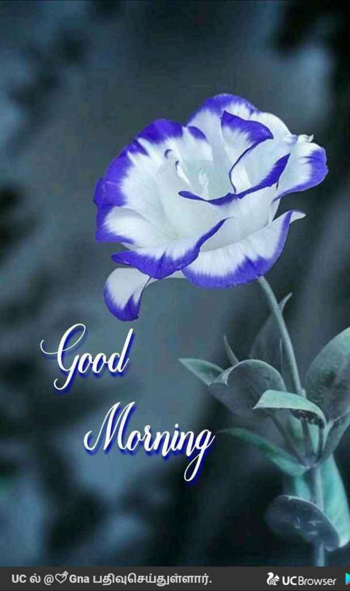 🌞காலை வணக்கம் - Good a Morning UC @ Gna uglu g GITTITIS . UC Browser - ShareChat