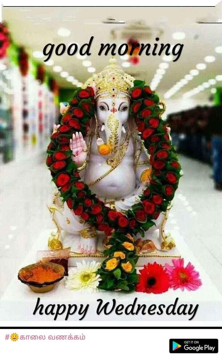🌞காலை வணக்கம் - good morning happy Wednesday | # காலை வணக்கம் GET IT ON Google Play - ShareChat
