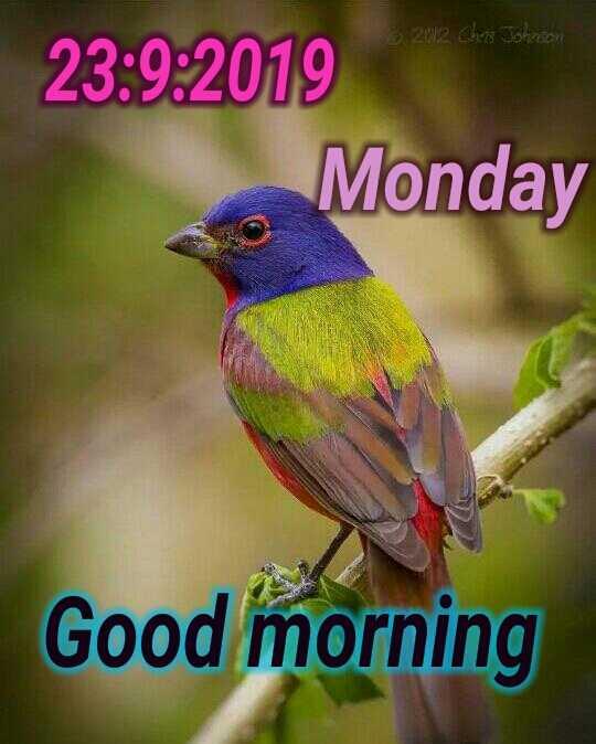 🌞காலை வணக்கம் - 2012 Chris Johnson 23 : 9 : 2019 Monday Good morning - ShareChat