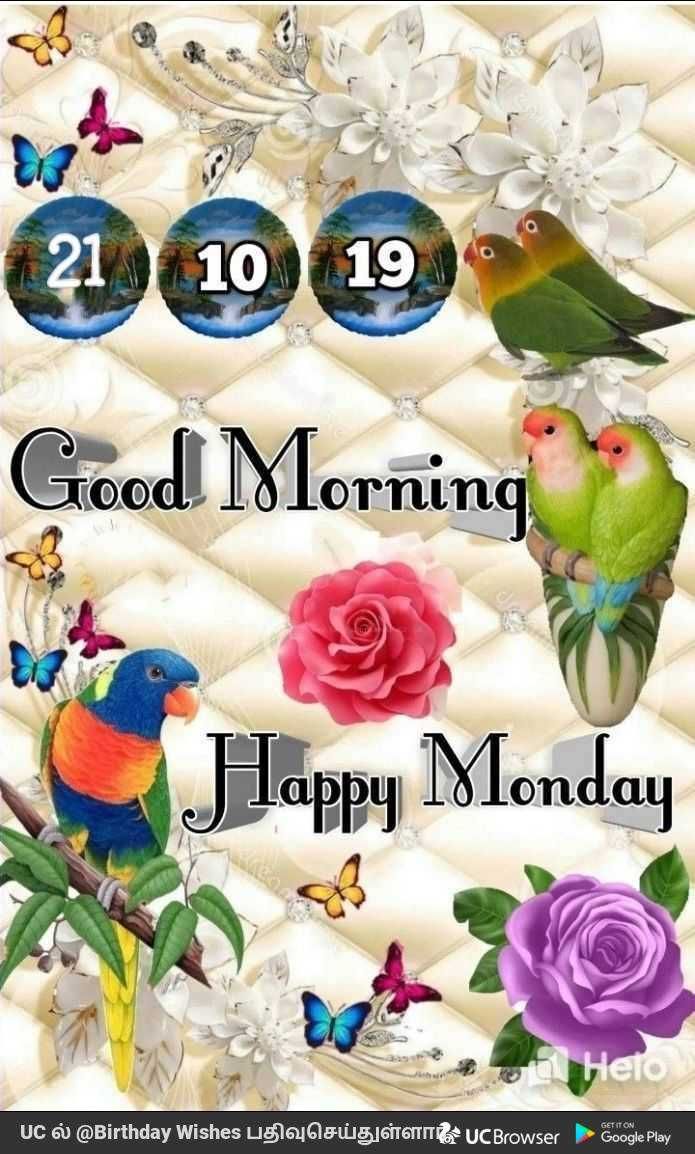 🌞காலை வணக்கம் - 000 Good Morning TO ino Happy Monday Hero GET IT ON UC ல் @ Birthday Wishes பதிவுசெய்துள்ளா UCBrowser - Google Play | - ShareChat