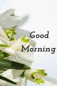 🌞காலை வணக்கம் - < Good Morning - ShareChat