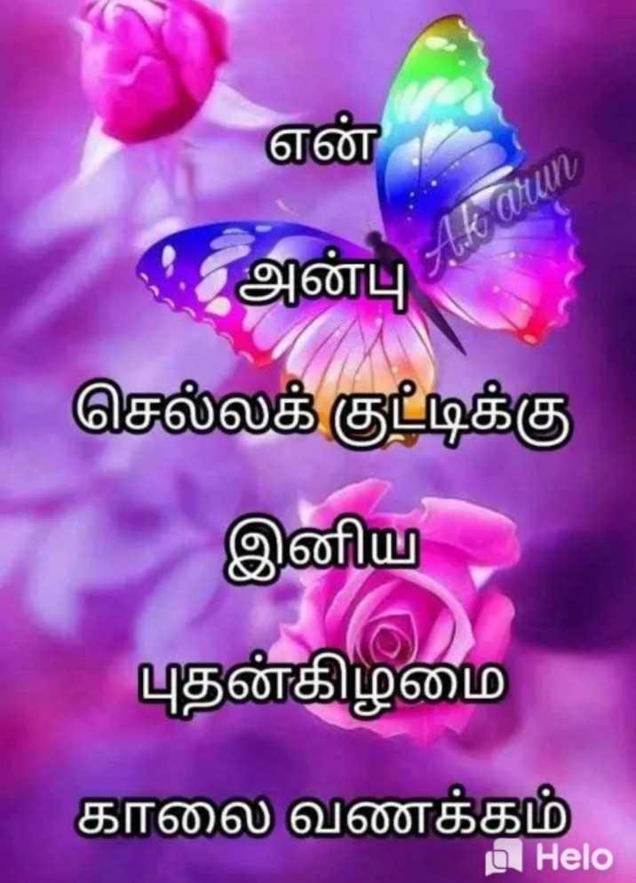 🌞காலை வணக்கம் - aun என் . அன்பு செல்லக் குட்டிக்கு இனிய புதன்கிழமை காலை வணக்கம் u - ShareChat