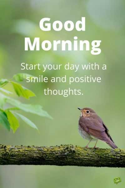 🌞காலை வணக்கம் - Good Morning Start your day with a smile and positive thoughts . - ShareChat