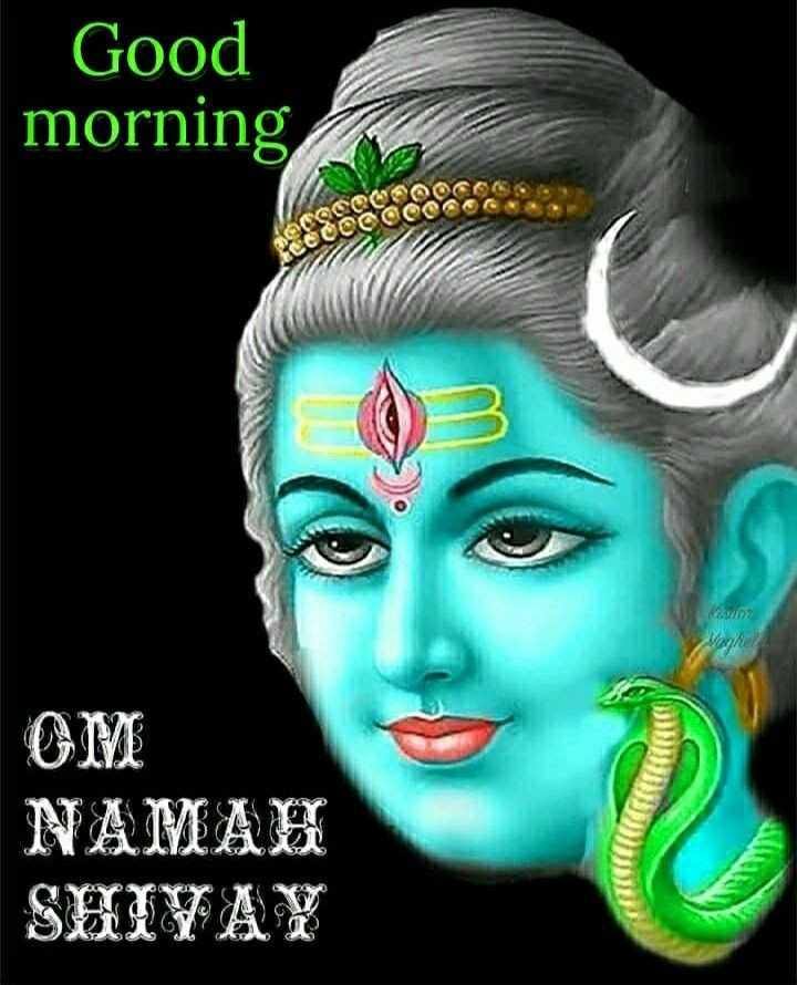🌞காலை வணக்கம் - Good morning COOC OM NAMAH SHIVAY - ShareChat