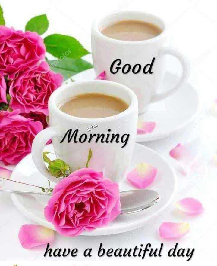 🌞காலை வணக்கம் - Good M . S . K Morning have a beautiful day - ShareChat