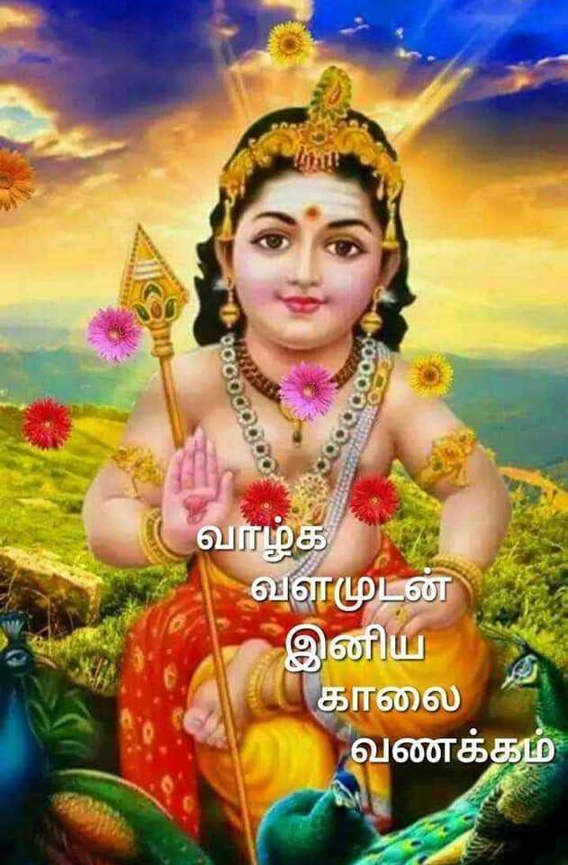 🌞காலை வணக்கம் - வாழ்க் வளமுடன் இனிய காலை வணக்கம் - ShareChat