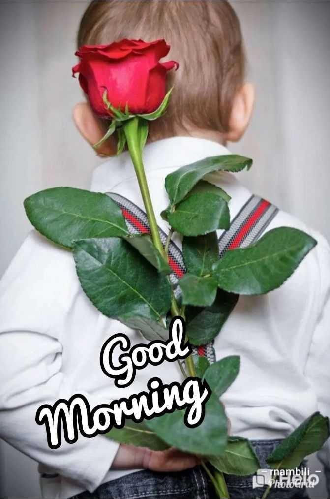 🌞காலை வணக்கம் - Good Morning rnambili - PhotoGriz ? - ShareChat