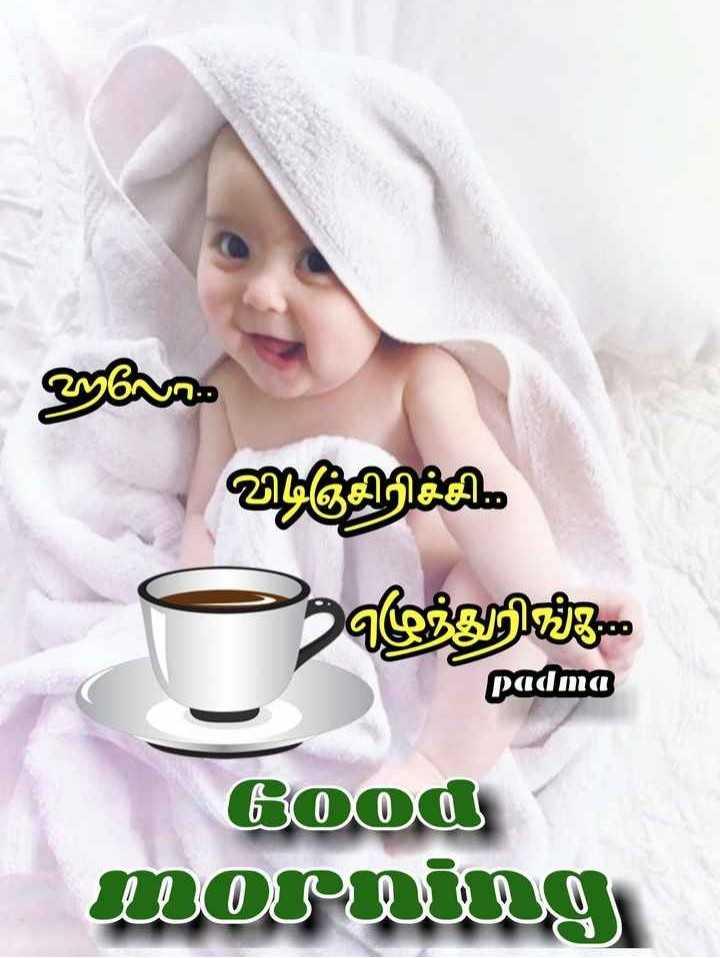 🌞காலை வணக்கம் - விடிஞ்சிரிச்சி எந்றின்ம padma Good morning - ShareChat