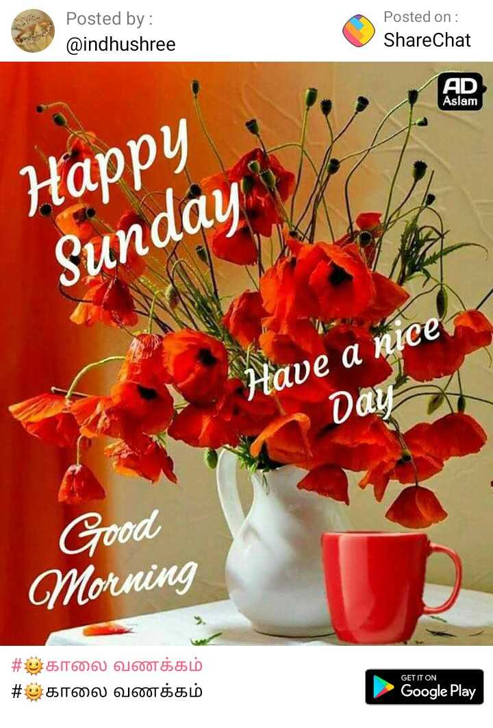 🌞காலை வணக்கம் - Posted by : @ indhushree Posted on : ShareChat AD Aslam Happy Sunday Have a nice Day Good Morning # அகாலை வணக்கம் # அகாலை வணக்கம் GET IT ON Google Play - ShareChat