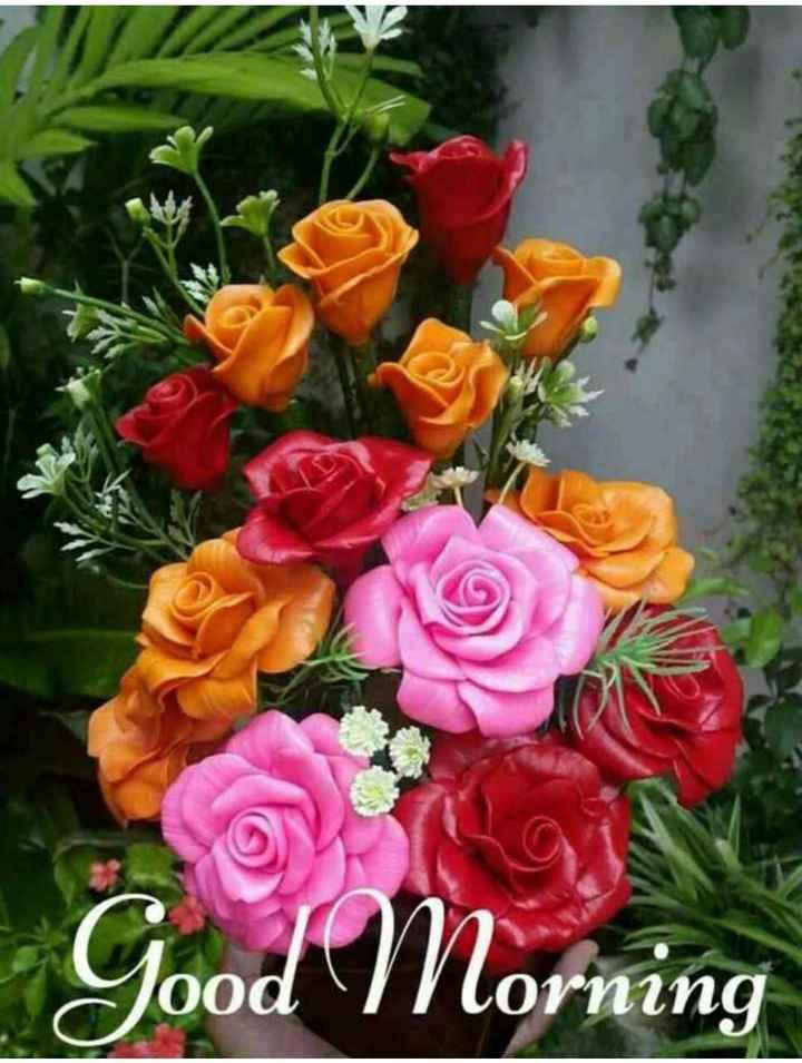 🌞காலை வணக்கம் - Yood Morning - ShareChat