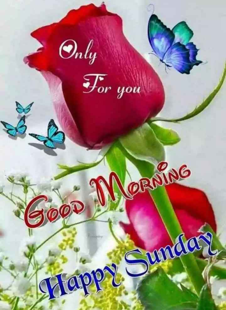 🌞காலை வணக்கம் - For you Good MORNING dappy Sunday - ShareChat